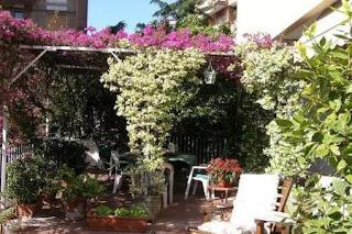 cubrir terraza con plantas