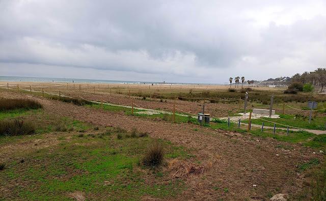 Espai de nidificació de la platja de Ribes Roges de Vilanova i la Geltrú