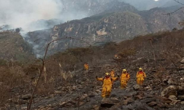 Cusco: controlan incendio forestal en el Santuario Histórico de Machu Picchu