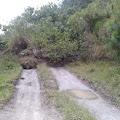 Akibat Curah Hujan Tinggi, Terjadi Longsor di Desa Parmonangan Samosir