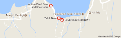 http://www.lomboksociety.com/2017/11/transport-from-teluk-nare-to-gili-island.html