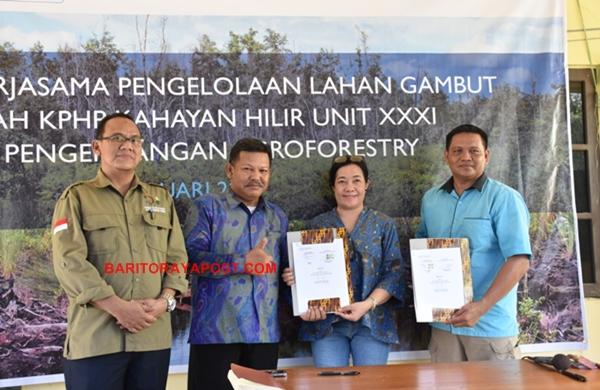 USAID Lestari Fasilitasi Kerjasama Pengelolaan Lahan Gambut Pengembangan Agroforestry
