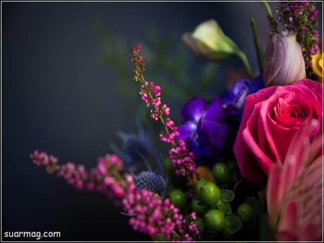 صور ورد - خلفيات ورد 5 | Flowers Photos - Roses wallpapers 5