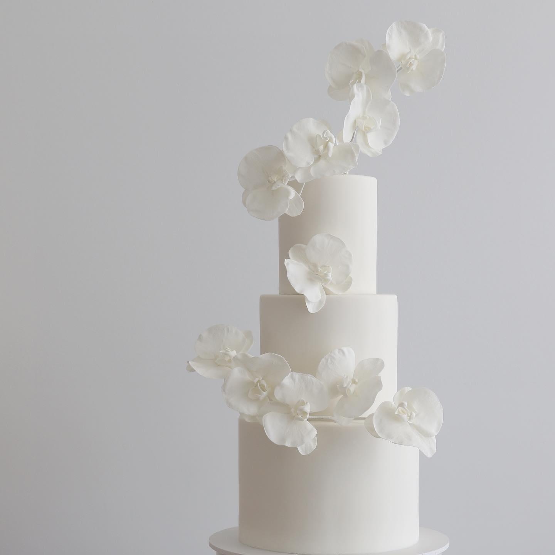 sunshine coast wedding cake designer