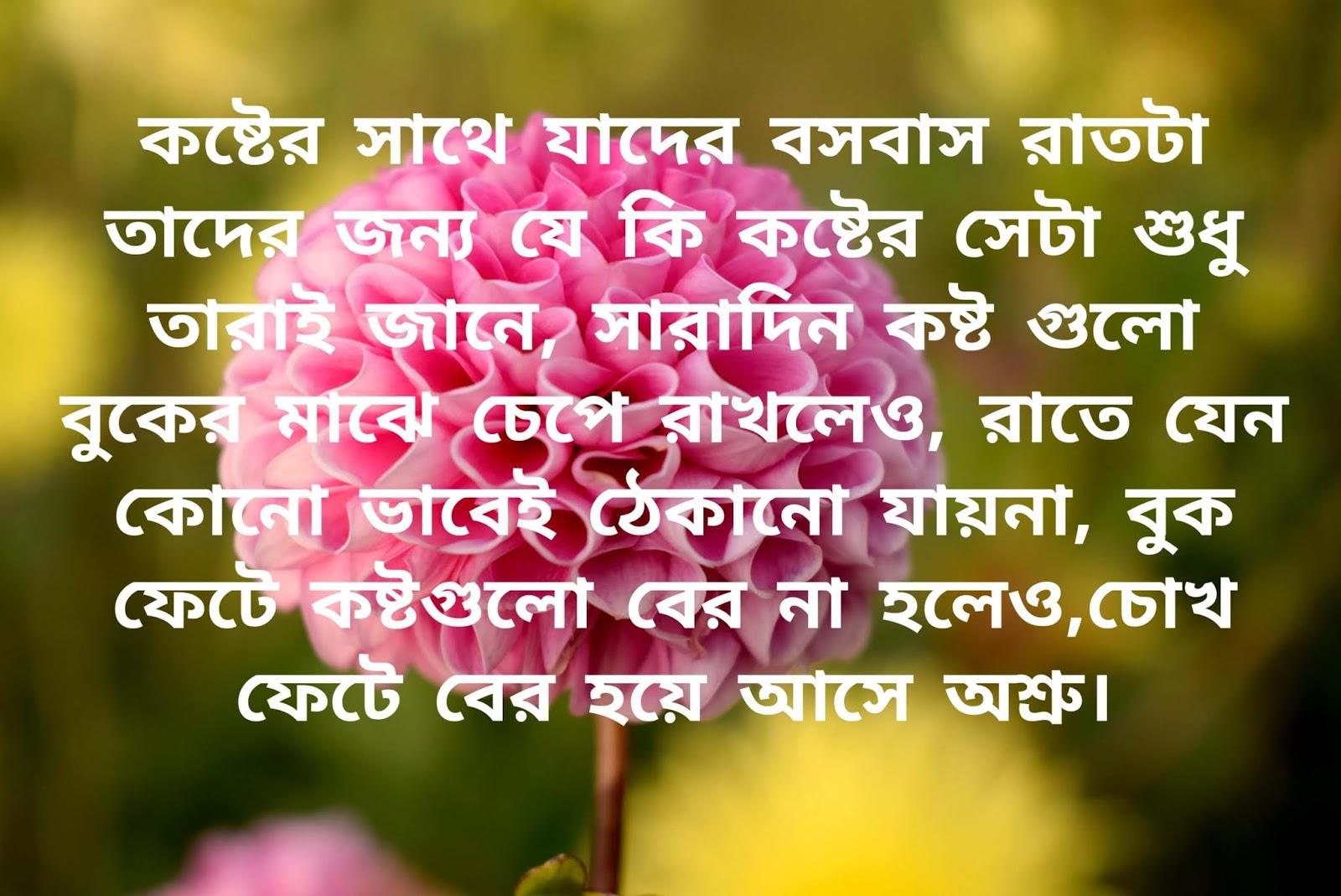 Bengali Shayari photo