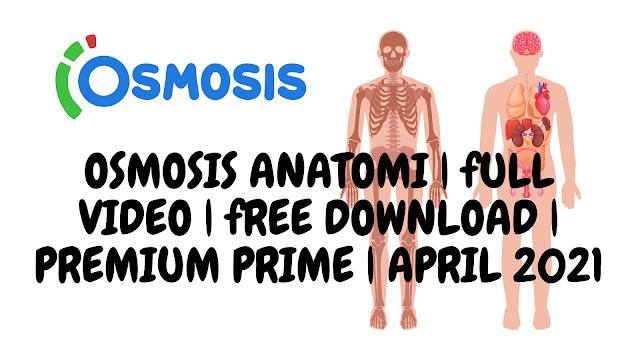 OSMOSIS ANATOMI | FULL VIDEO | FREE DOWNLOAD | PREMIUM PRIME | APRIL 2021
