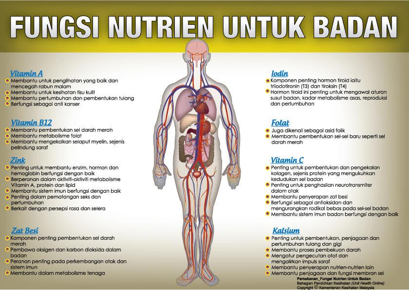 Ketahui Fungsi Nutrien