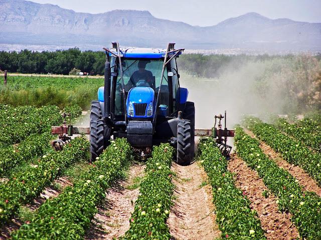 Η Ισπανία απαγορεύει τις τιμές παραγωγού κάτω του κόστους