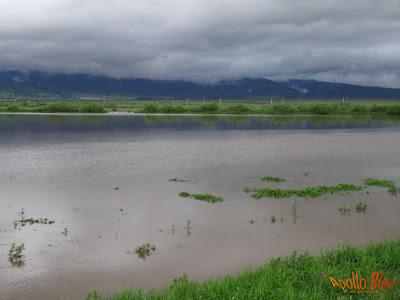Inundatii Joseni - Borzont