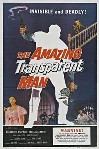 Watch The Amazing Transparent Man Online Free in HD