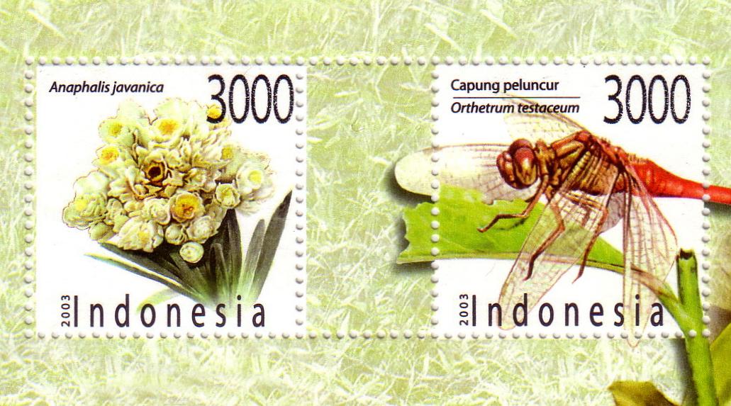 Perangko Tahun 2003 tgambar bunga edelweis