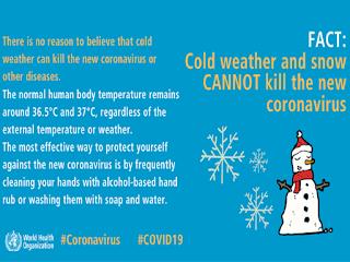 Cold weather and ice eliminate Corona virus