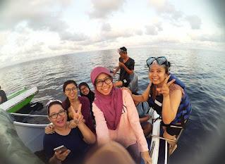 Whale shark kepulauan derawan
