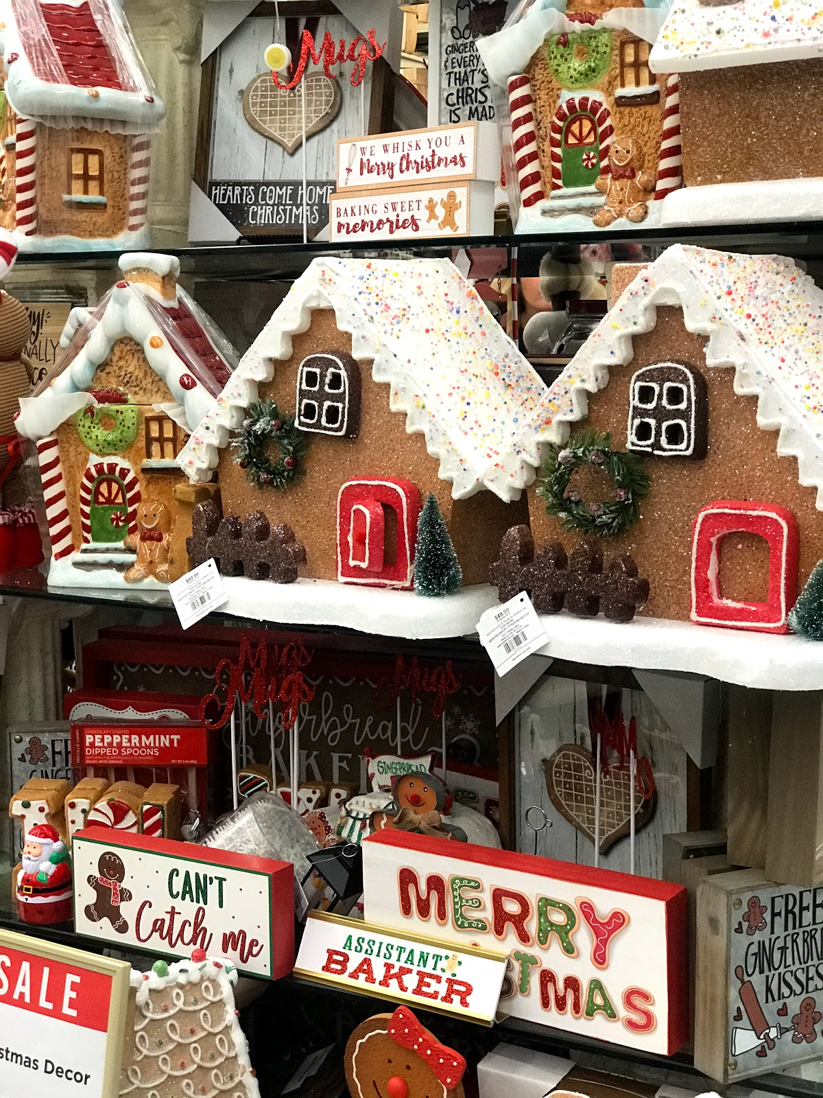 Bought one gingerbread house for the Christmas Holidays