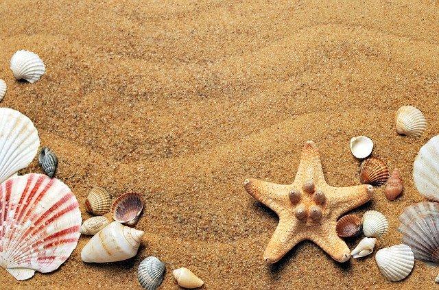 Pasir Laut untuk Bangun Rumah