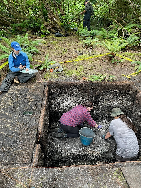 Humans managed shellfish and their predators for millennia in British Columbia