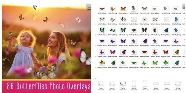 86 Butterflies Photo Overlays