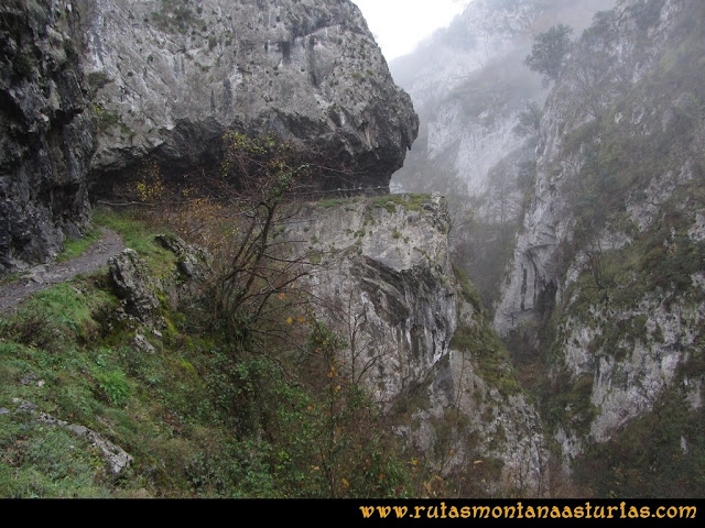 Ruta de las Xanas y Senda de Valdolayés: Último tramo del desfiladero de las Xanas