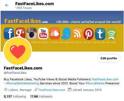 professional twitter bio examples fastfacelikes
