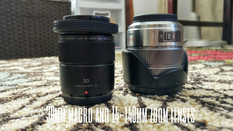 two panasonic lenses - 30mm macro and 14-140mm zoom lenses