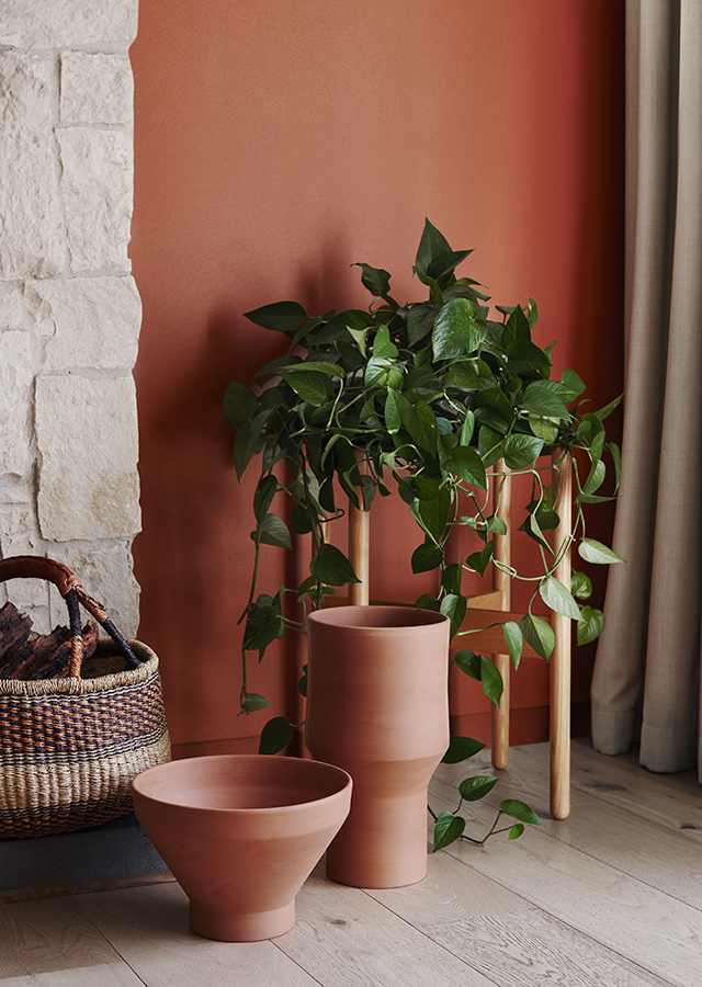The pothos #plant pops vibrantly against that terracotta wall- design addict mom