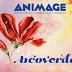 Festival Internacional de Animação de Pernambuco será realizado em Arcoverde