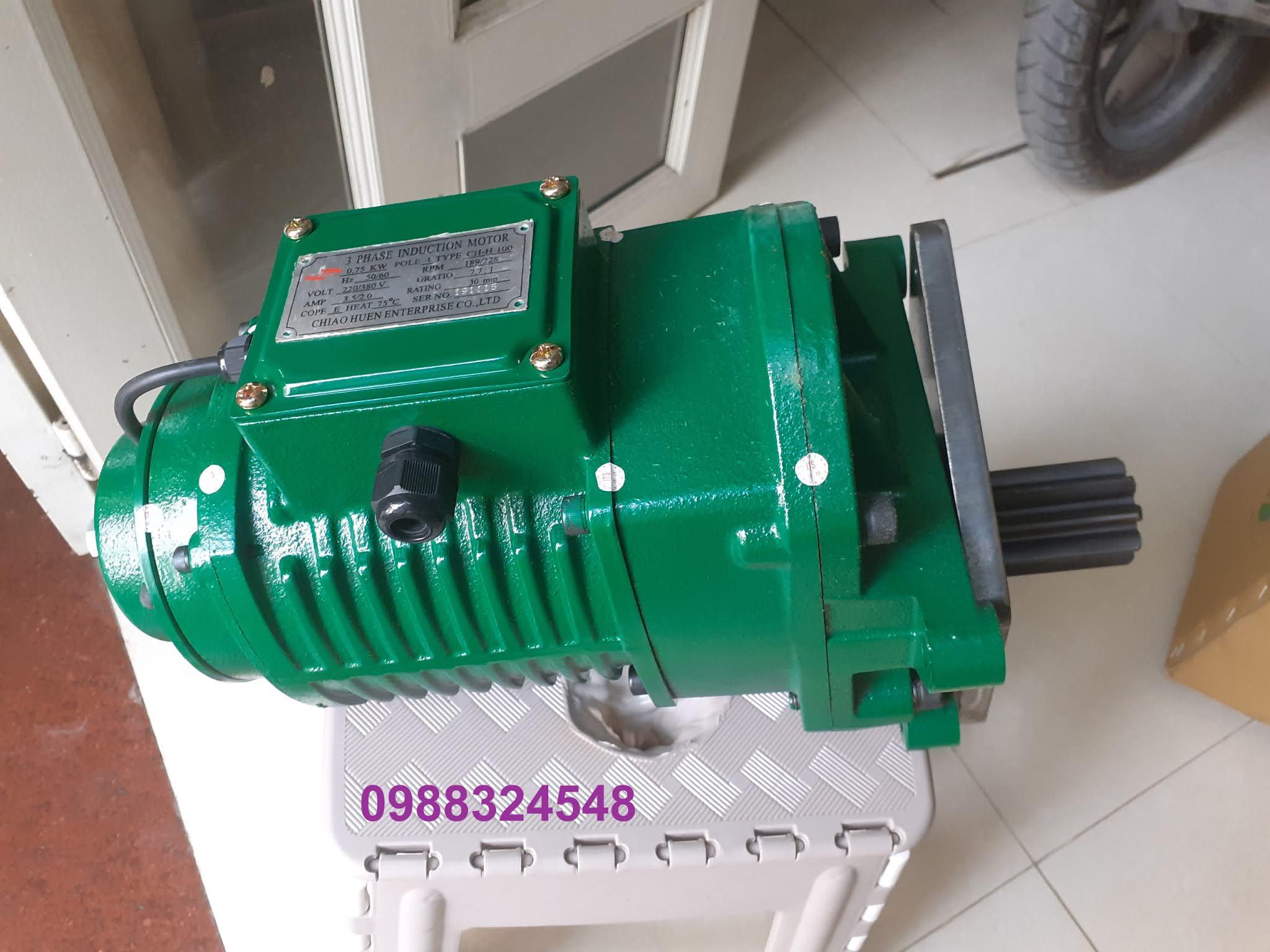 Motor dầm biên ITS CH-H-100 0.75kw x 4P