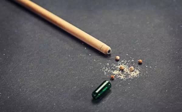 Pensil Ini Dapat Tumbuh Menjadi Tanaman-2