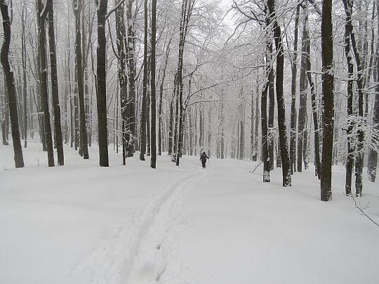 Zejście z Kanasiówki.