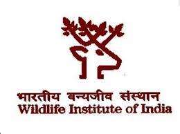 WII 2021 Jobs Recruitment Notification of Sr Project Associate & more Posts