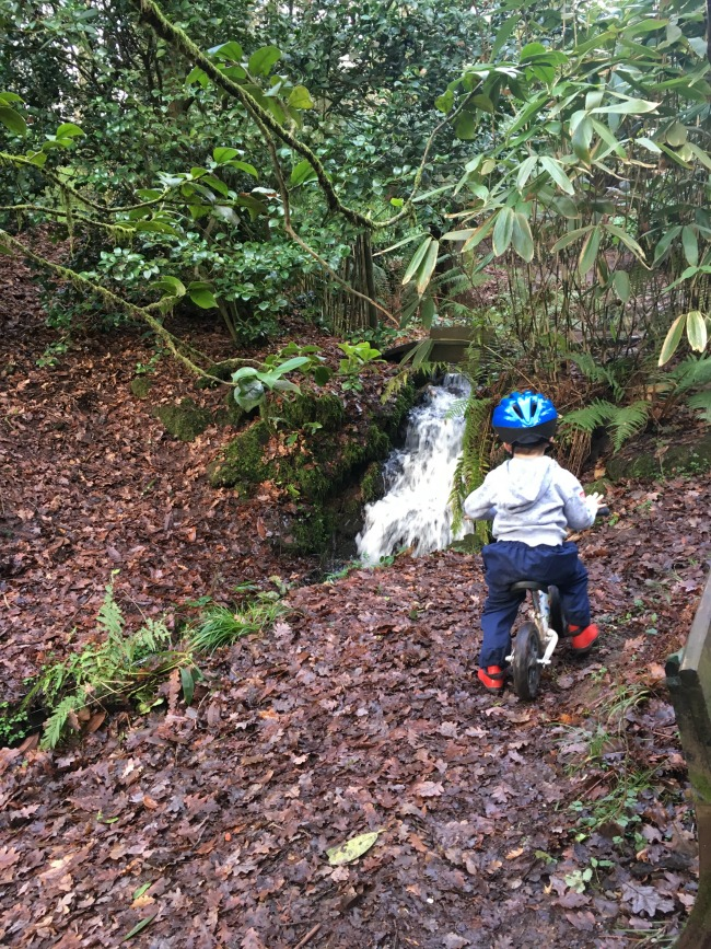 boy-on-bike-at-cefn-onn-park-cardiff-near-waterfall