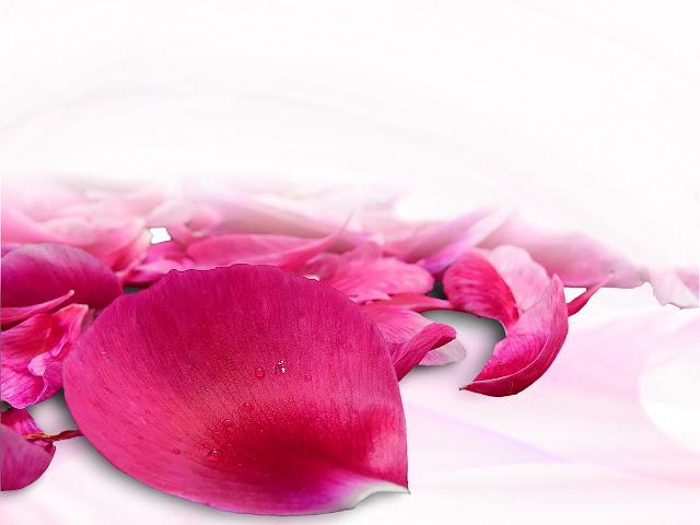 Różany relaks