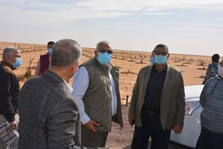 محافظ الوادي الجديد يتفقد مشروع إستثمار زراعي  علي مساحة 117 فدان بالداخلة