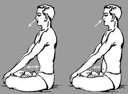 How To Do Kapalbhati, Pranayama For Begginers(2020)? Steps and Benefits