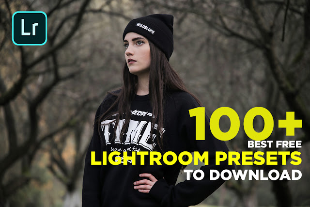 100 + Best Free Lightroom Presets to Download