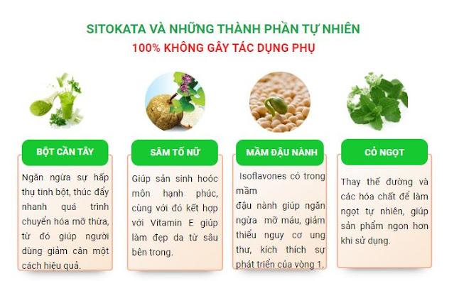 Bột cần tây Sitokata là gì