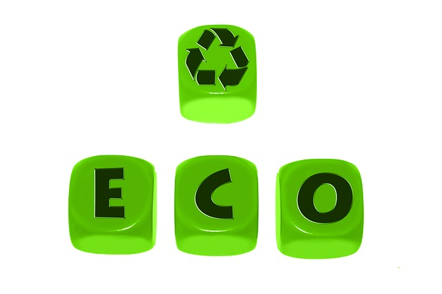 La economía circular tiene la clave.