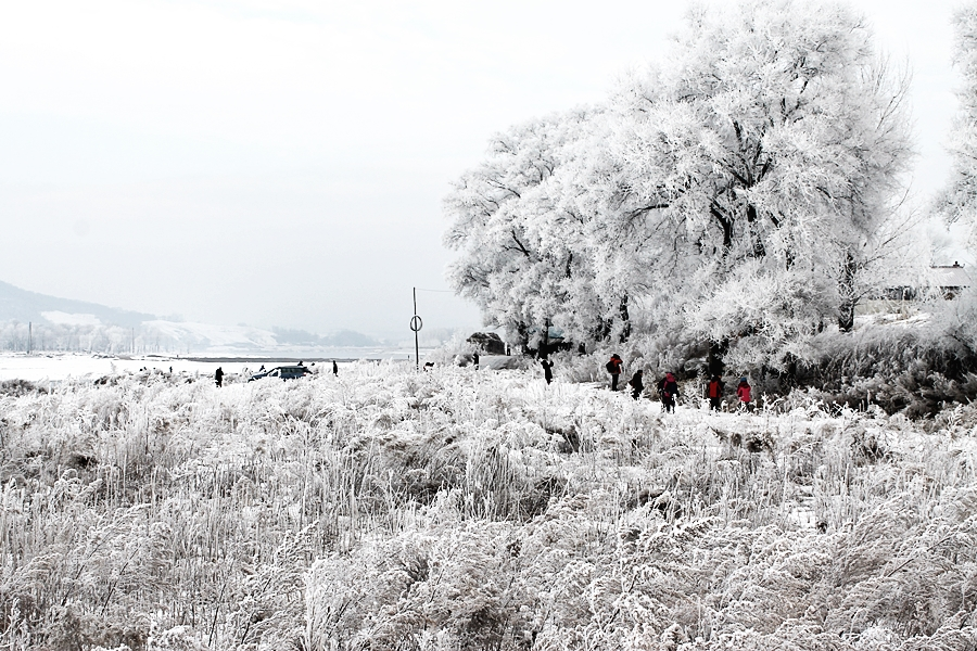 snow winter nature china