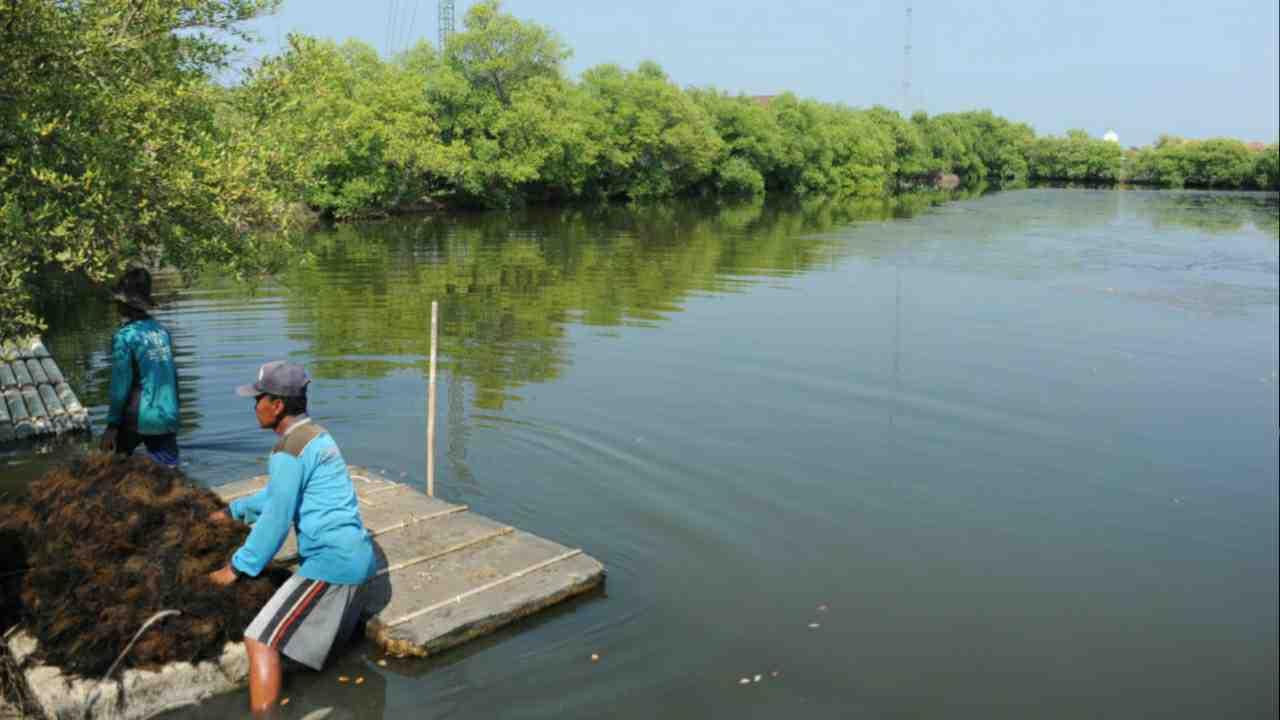 KKP-BKPM Bersinergi Meningkatkan Investasi di Sektor Kelautan dan Perikanan di Maluku