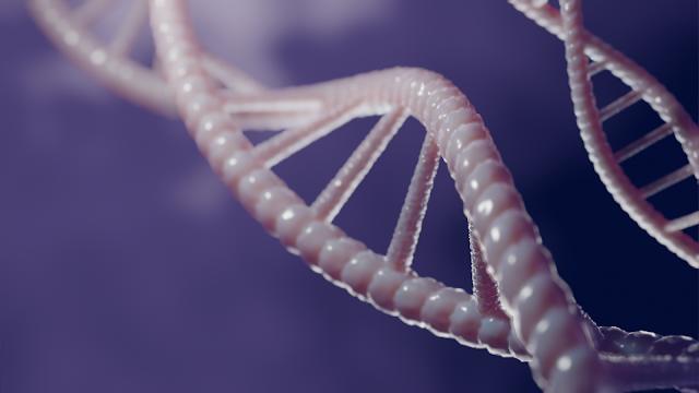 DNA 3d illustration
