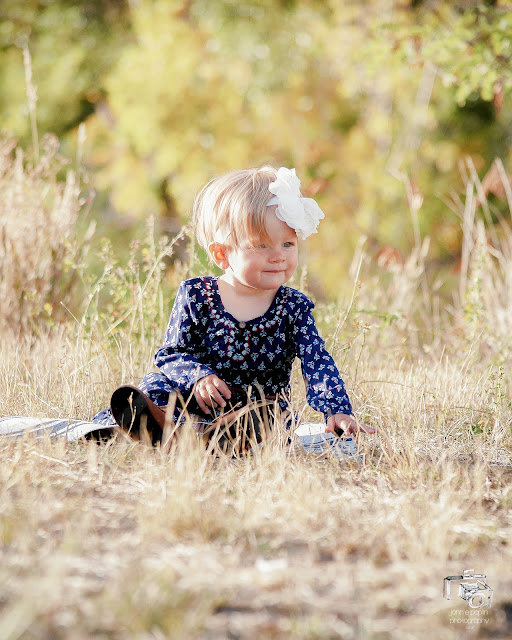 A one year old girl sits in a grassy meadow for her portrait