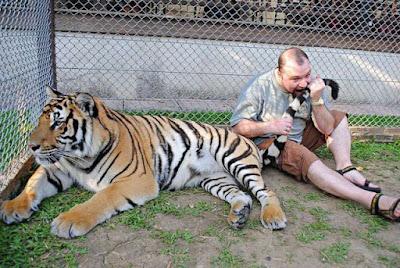 Witzige Männer Bilder - Tiger beißen - lustige Bilder