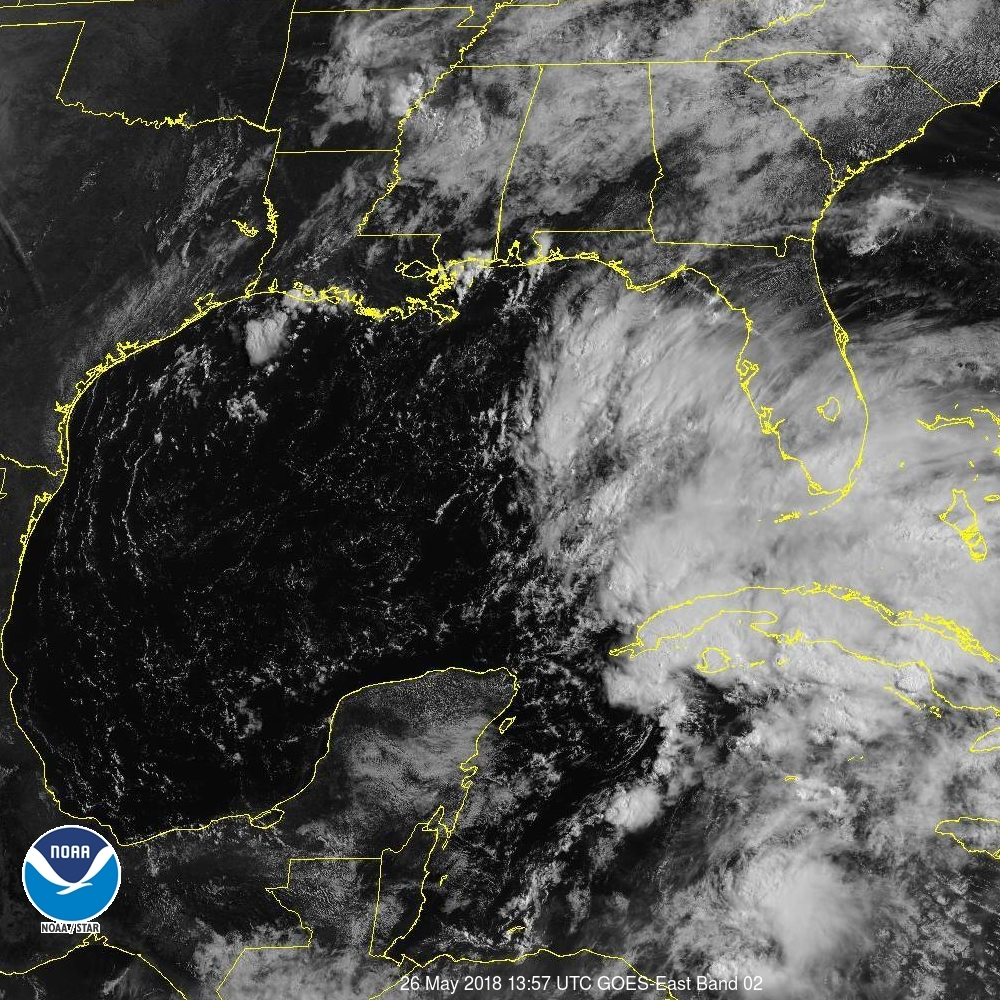 mess of thunderstorms in the eastern gulf of mexico still it is threatening to cause a lot of flooding in the southeastern united states in