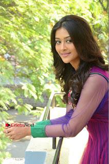 Actress Pooja Jhaveri Latest Stills in Purple Salwar Kameezt at Dwaraka Success Meet  0136.JPG