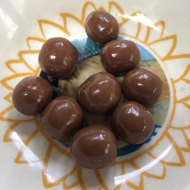 chocolate fruit snacks