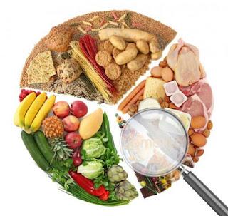 Gıda Mühendisliği Bölümü