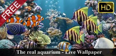 The real aquarium HD