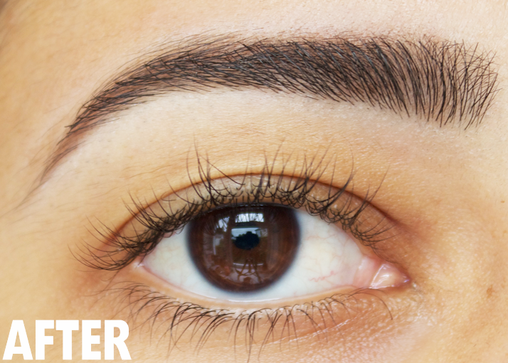 How To: The Perfect Brow in 5 Steps