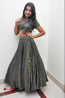 Kamna Singh Latest Pictures at Thikka Audio Launch | ~ Bollywood and South Indian Cinema Actress Exclusive Picture Galleries