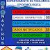 NOVO HORIZONTE-BA: BOLETIM INFORMATIVO SOBRE CORONAVÍRUS ( 02/06/2020 )